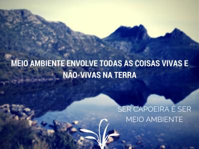 ser_capoeira_ser meio_ambiente_bichodacapoeira